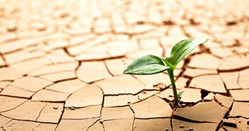 Riscaldamento globale: allarme ENEA