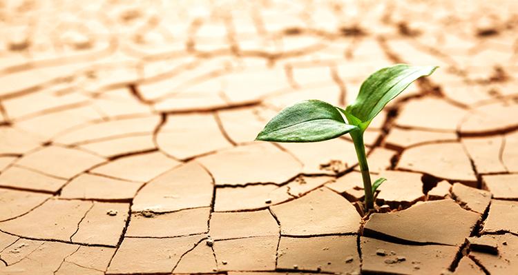 Riscaldamento globale: allarme ENEA 1